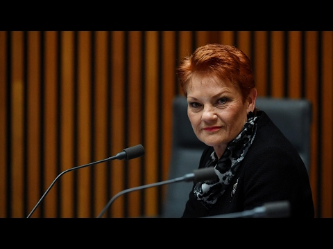 'Do they tick a box?' Pauline Hanson asks how the ABC defines Aboriginality