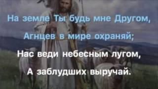 Как овечку, Пастырь сильный
