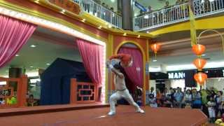 preview picture of video 'Acrobatic Ballet Performance'