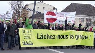 preview picture of video 'Manifestation des agriculteurs et viticulteurs à Châlons.'