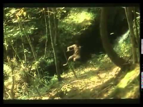 Trollsommar 1980   Svensk full film för barn