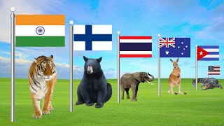 National Animals of Countries   Flags Of The World   Flags And Countries Name With National Animal