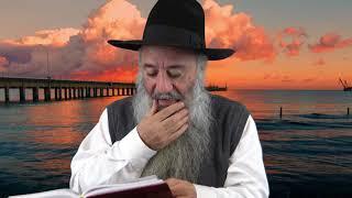 N°320 Le nom de Trump dans l'exode chapitre 23 verset 30 et les allusions prophétiques recommandées