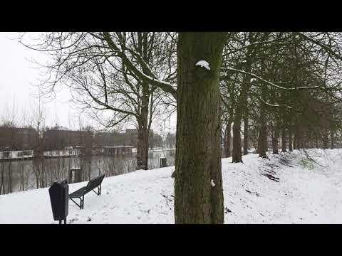 Sneeuw op wallen