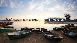 Прикормка для рыбалки в московской области
