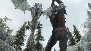 Мод Броня Ведьмака (Skyrim)