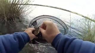 Платная рыбалка на металлплощадке в кемерово