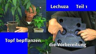 Selbstbewässerung Lechuza Topf für draußen und drinnen nutzen wir für eine exotische Pflanzen Der Au