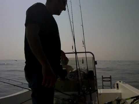 Pesca di video spiccio