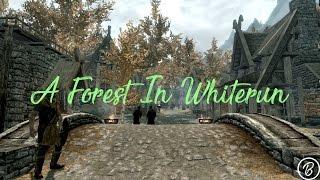 [Skyrim Mod] A forest In Whiterun