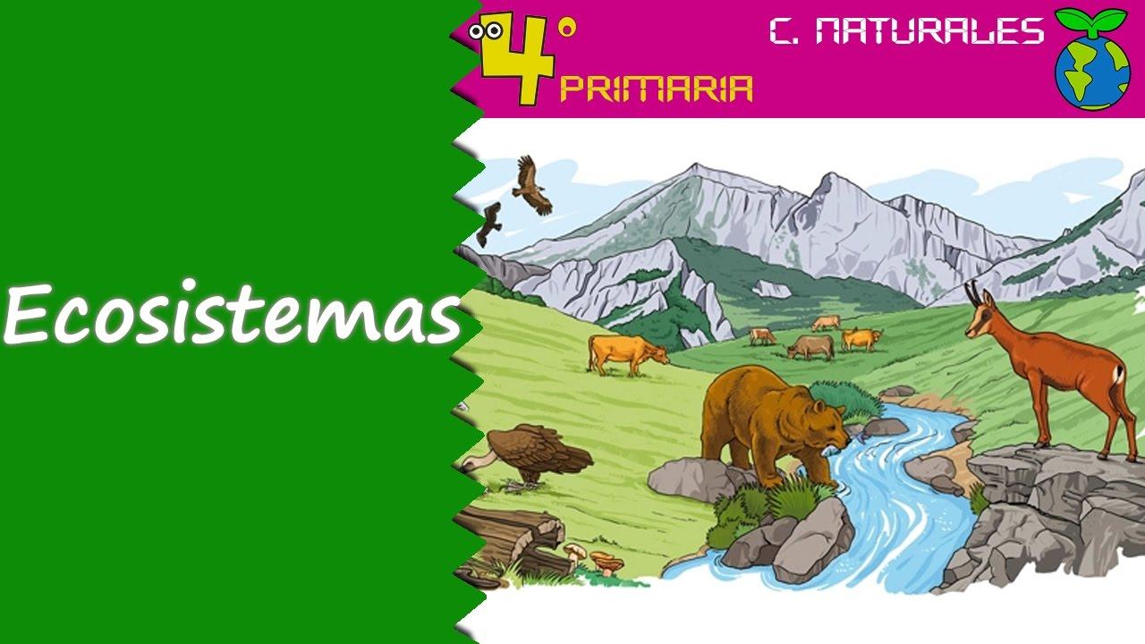 Ciencias de la Naturaleza. 4º Primaria. Tema 5. Los ecosistemas