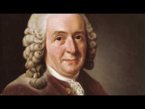 Adam Smith und der freie Markt 1/6 DOKUMENTATION DEUTSCH