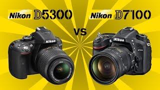 Nikon D5300 vs Nikon D7100