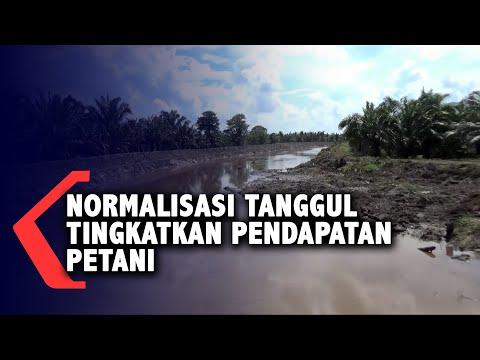 normalisasi tanggul tingkatkan pendapatan petani