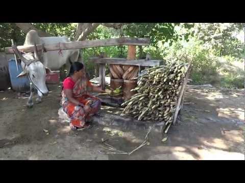 traditional sugarcane juice machine in India