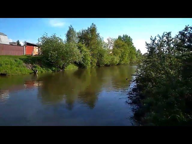 Тёплый канал в Ангарске затянуло масляными пятнами