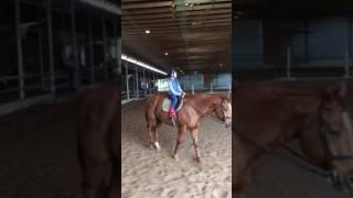 Kenzie Learns to Trot