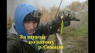 Оптимальная рыбалка на щуку осенью в самаре