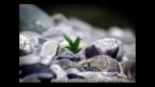 Scorpions -  maybe i maybe you traduzione italiano