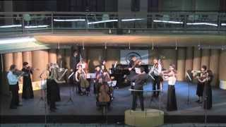 Vivaldi Concerto in C minor RV 401