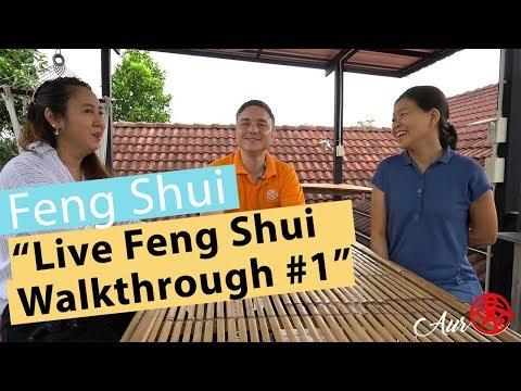 Feng Shui Walkthrough with Expert and Mentor,  Aur (#1)