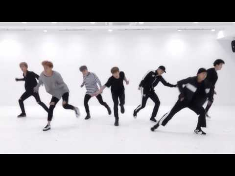 BTS 'Blood Sweat & Tears' Mirrored Dance Practice