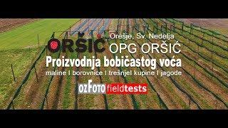 OPG Oršić I Proizvodnja malina, jagoda, borovnica, trešnja i kupina