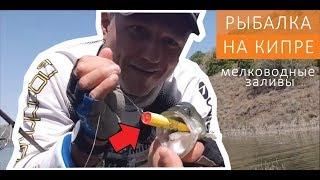 Рыбалка на кипре с берега ларнака