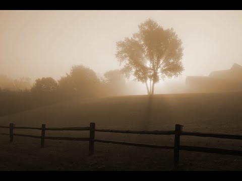 Aquascape - Sunrise in Fog [Visualization]