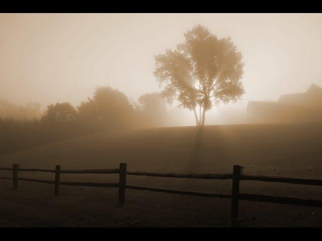 Aquascape - Sunrise in Fog [Visualization]