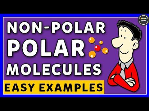 Polar And NonPolar Molecules | Chemistry