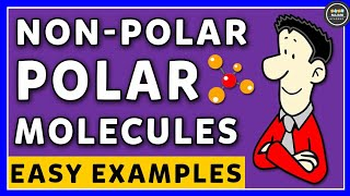 Polar And NonPolar Molecules | How to Identify Polar and NonPolar Molecules | Chemistry