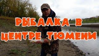 Места для рыбалки в тюменской области