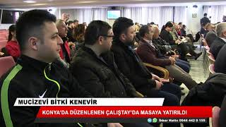 Konya'da kenevir çalıştayı!