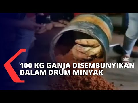 Penyelundupan Ganja Seberat 100 KG Dalam Drum Minyak Berhasil Digagalkan Polisi!
