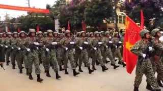 preview picture of video 'Duyệt binh kỷ niệm 60 chiến thắng Điện Biên Phủ 7/5/1954-7/5/2014'