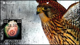 Video ZQ435c82: Pt41