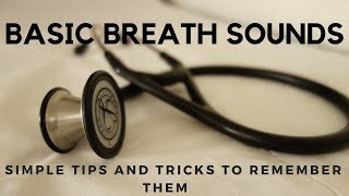 Basic Breath Sounds: Simple Tips and Tricks to Remembering Them