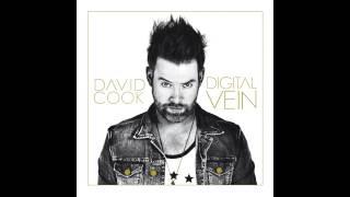 David Cook - Better Than Me [Audio]