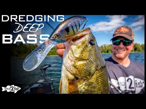 Deep-Diving Crankbaits for Bass