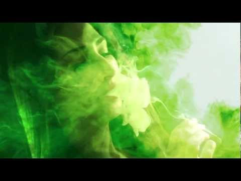 """Tybox & Willdy Diamond Frank - """"Green Thumb"""" Official Music Video"""