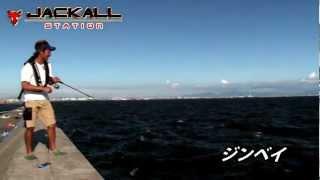 「ジンベイ」×沖堤=タチウオ連発!