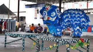 preview picture of video 'Lion Dance Video 2013 士毛月醒狮团青运团 傳統舞獅比賽'
