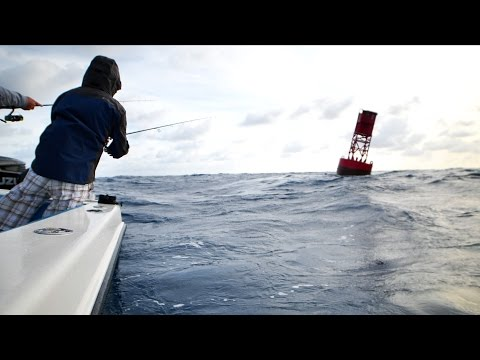 Fishing in Giant Ocean Swells for Powerful Fish