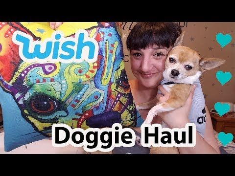 Testing Out A Doggie Haul  From WISH #5