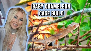 HOW TO: Baby Panther Chameleon Cage Build