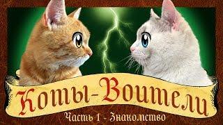 КОТЫ-ВОИТЕЛИ: СТАНЬ ДИКИМ! История кота РЫЖИКА! кот Малыш и кошка Мурка WARRIOR CATS animation