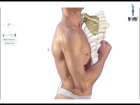 La gymnastique sur la relaxation des muscles des pieds