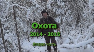 Охота 2014 - 2015  Вторая часть