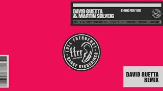 David Guetta & Martin Solveig   Thing For You (David Guetta Remix)